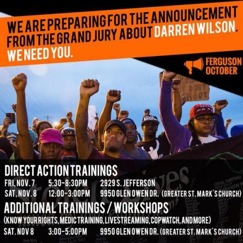 Ferguson DA trainings